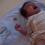【動画】赤ちゃんにおやつをあげる犬がいじらしすぎる!