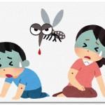 デングウイルスとは?感染経路は?デング熱の予防・症状・治療方法は?