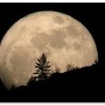 2014年のお月見はいつ?お月見団子の意味は?作り方は?
