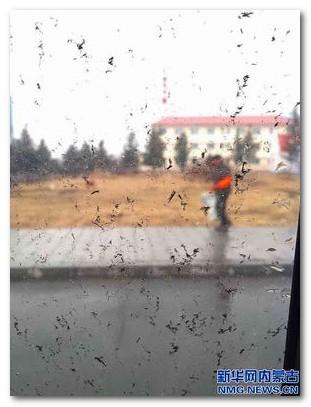内モンゴルの黒い雨